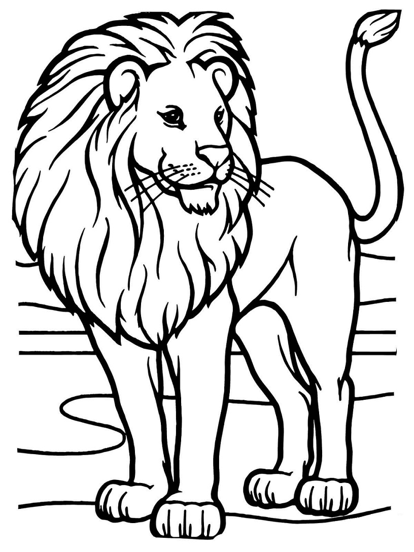 Top 20 Printable Lions Coloring Pages
