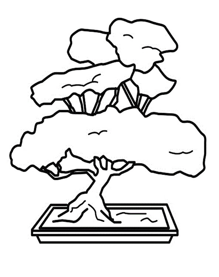 Top 20 Printable Bonsai Coloring Pages