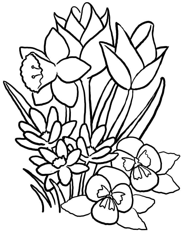 Top 20 Printable Tulips Coloring Pages
