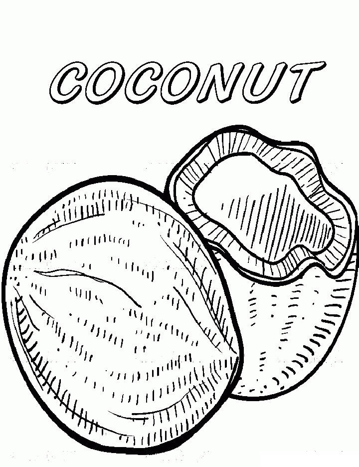 Top 20 Printable Coconut Coloring Pages