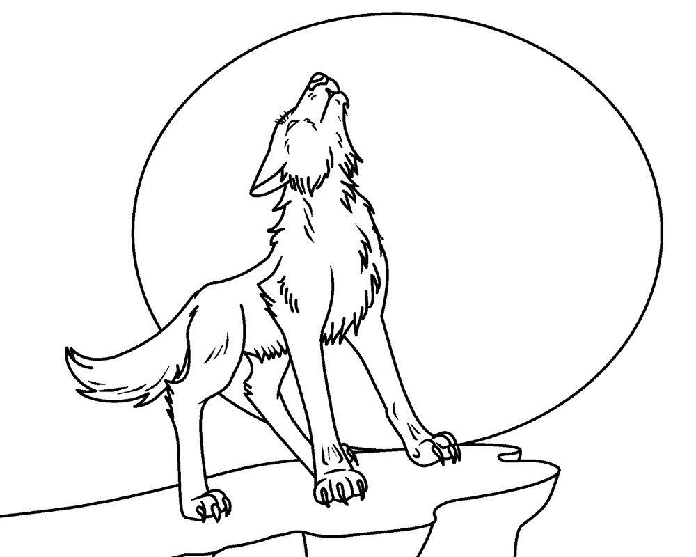 Wolf Coloring Pages | Free Wolf Coloring Pages | Wolf colors ... | 800x1000