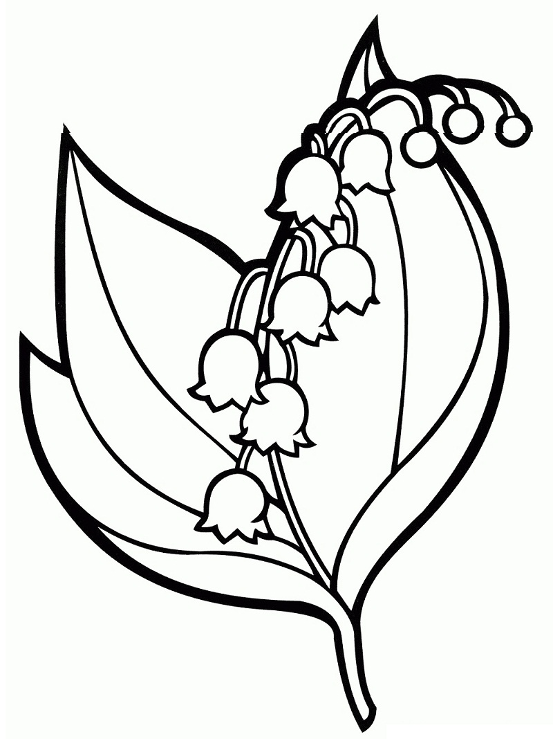 Top 20 Printable Bellflower Coloring Pages