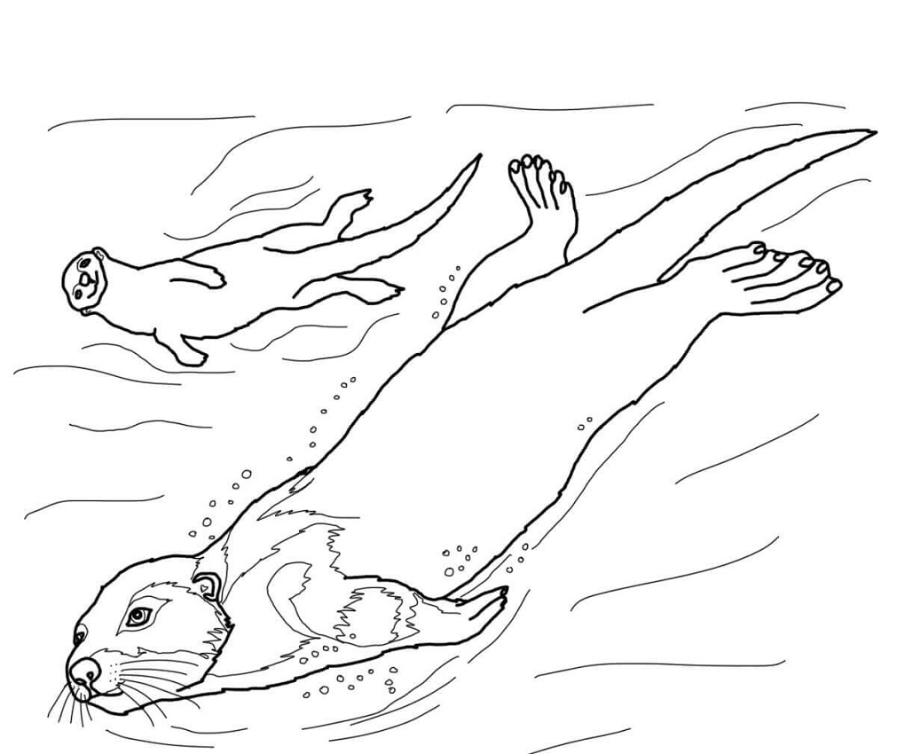 Top 20 Printable otter Coloring Pages