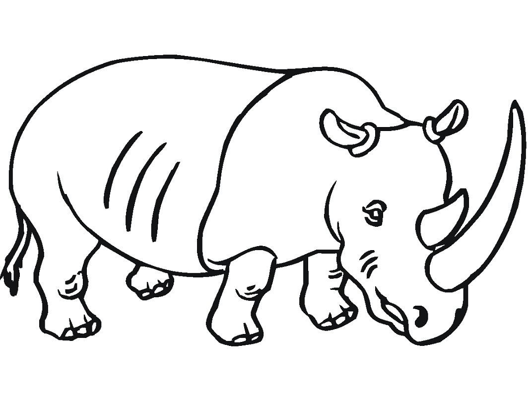 Top 20 Printable Rhino Coloring Pages - Online Coloring Pages