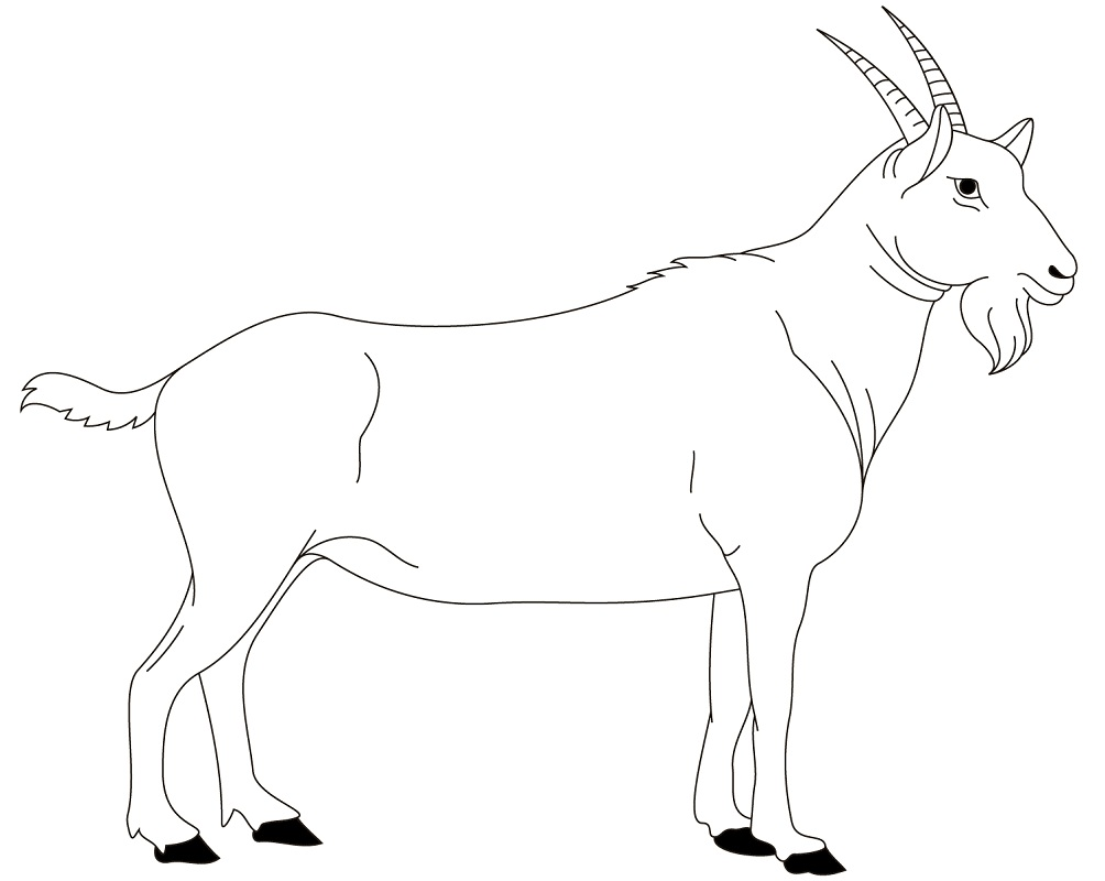 Top 20 Printable Goat Coloring Pages