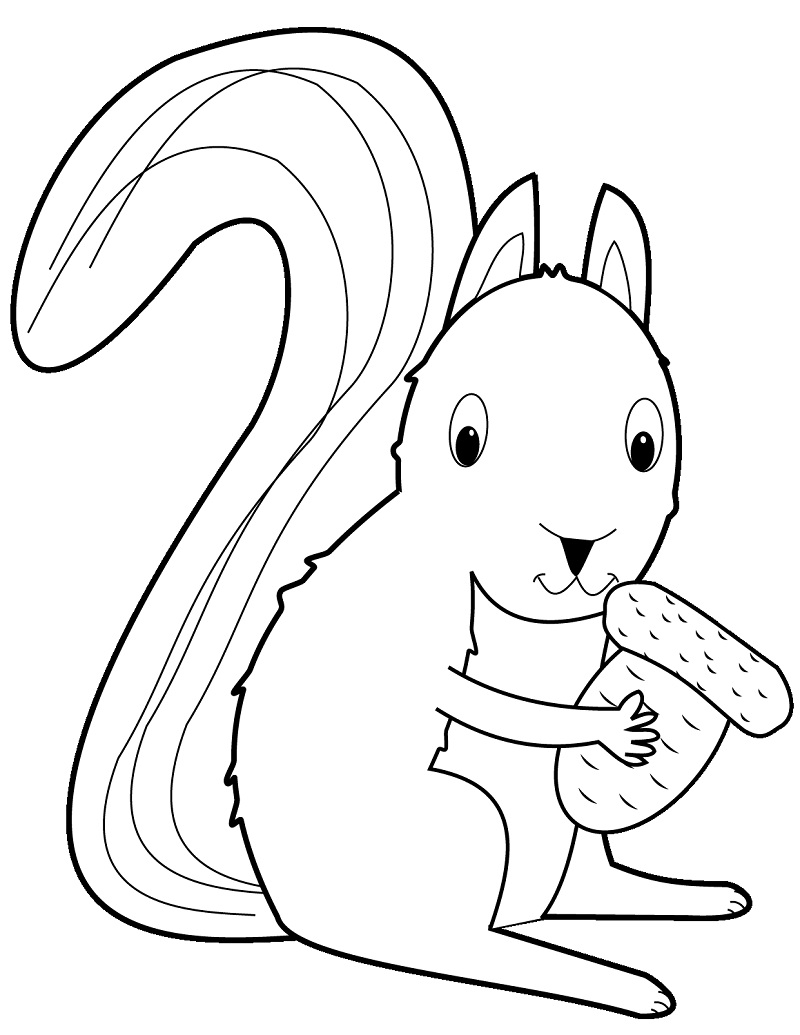 Top 20 Printable Squirrel Coloring Pages