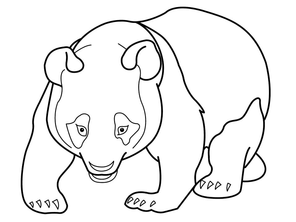 Top 23 Printable Panda Coloring Pages
