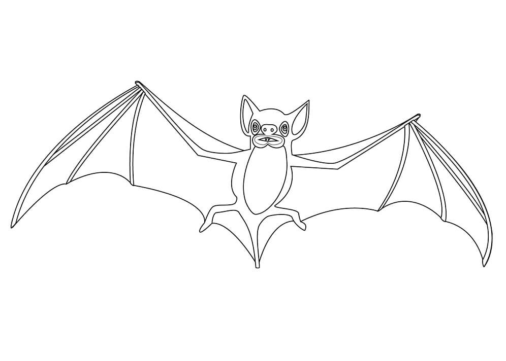 Top 20 Printable Bat Coloring Pages