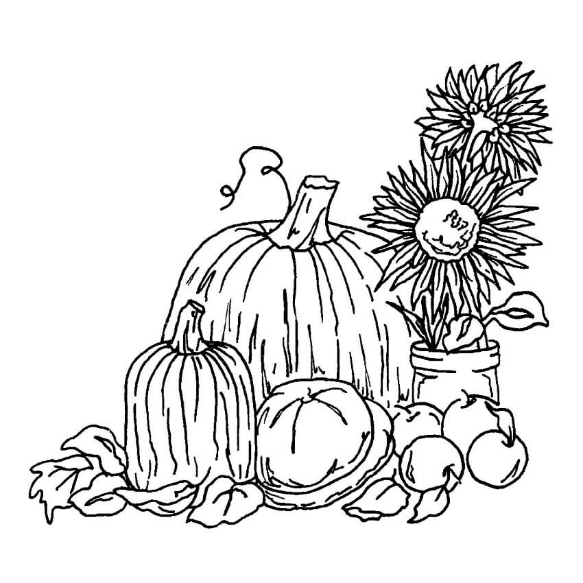 Top 20 Printable Harvest Coloring Pages